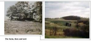 Farm pic 2